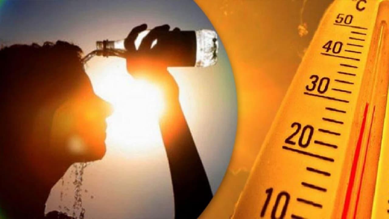 الرصد الجوي: هذا تصنيف حرارة شهر جويلية في ال71 سنة الأخيرة (وثيقة)
