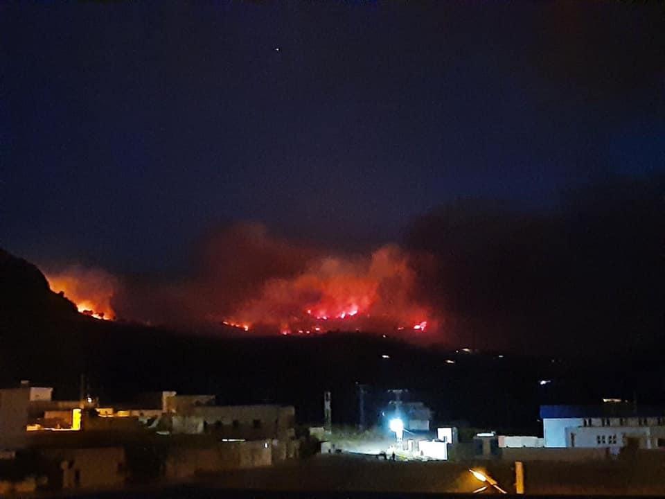 حريق هائل بغابات غار الدماء ..شاهد الخسائر المادية  (فيديو وصور)