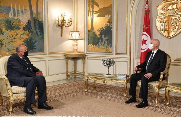 وزير الخارجية المصري ينقل رسالة السيسي لرئيس الجمهورية (فيديو)
