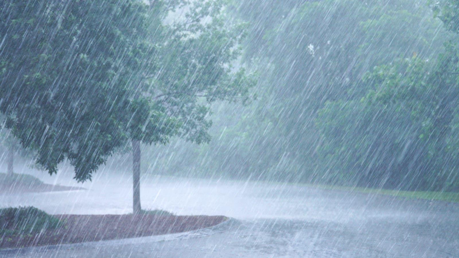 هذه كميات الأمطار المسجلة في الـ 24 ساعة
